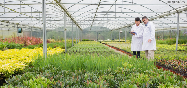 Planit : Job Profiles : Agricultural Consultant Agriculture