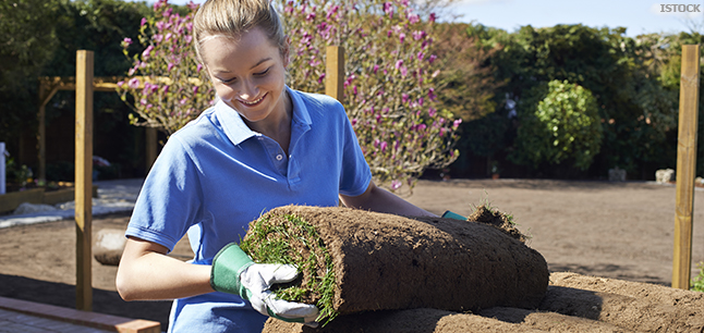 Planit : Job Profiles : Gardener Arboriculture and Horticulture