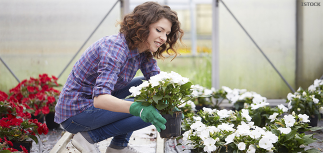 Planit Job Profiles Garden Centre Assistant Retail And Sales